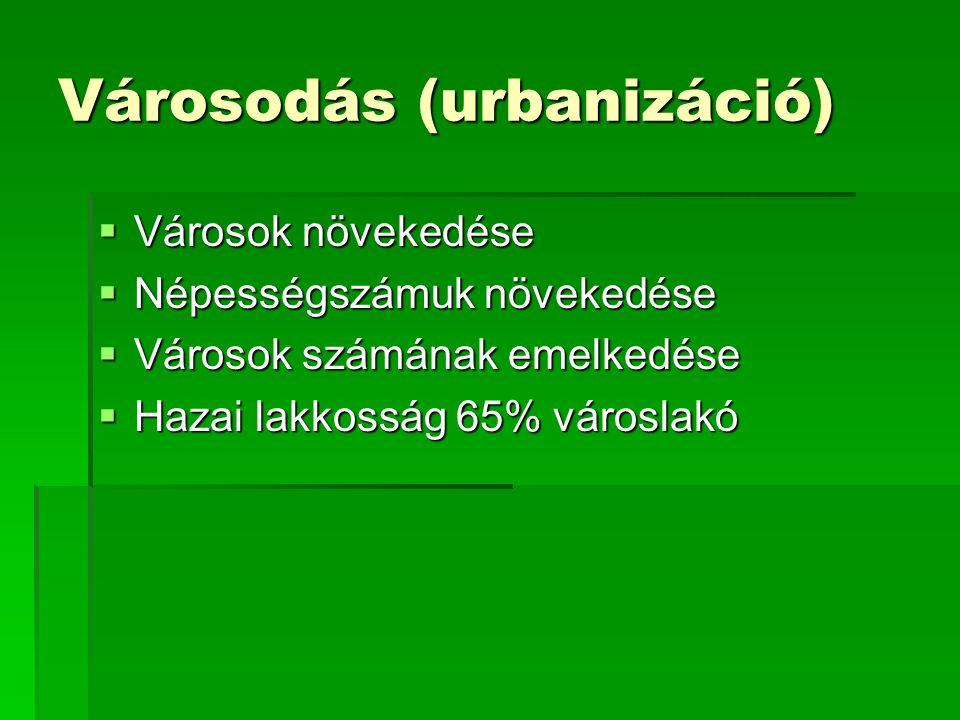 Városodás (urbanizáció)