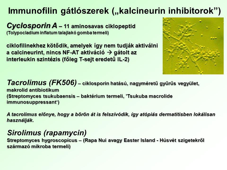 """Immunofilin gátlószerek (""""kalcineurin inhibitorok )"""