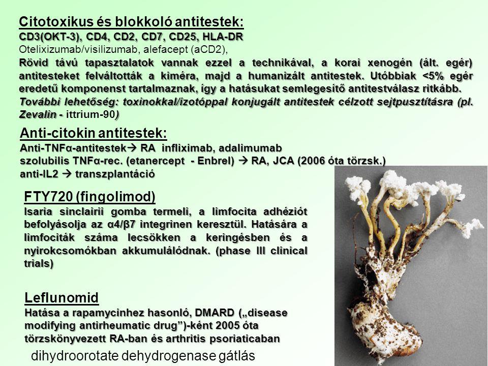Citotoxikus és blokkoló antitestek: