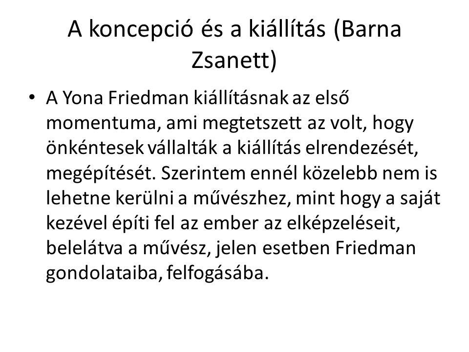 A koncepció és a kiállítás (Barna Zsanett)