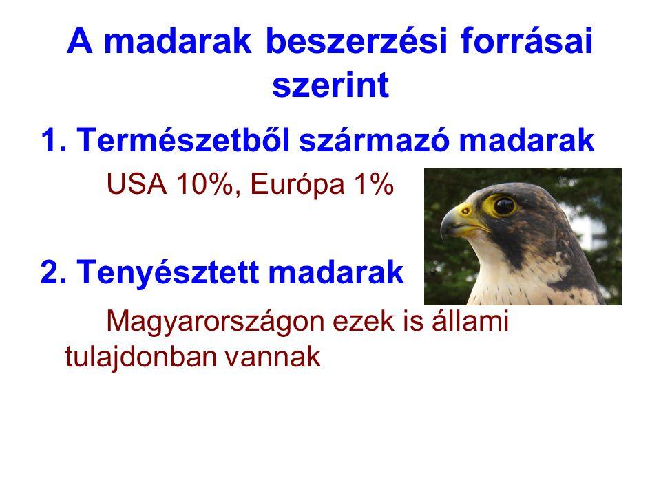 A madarak beszerzési forrásai szerint