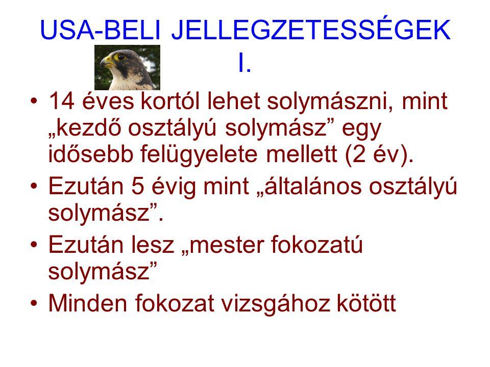 USA-BELI JELLEGZETESSÉGEK I.