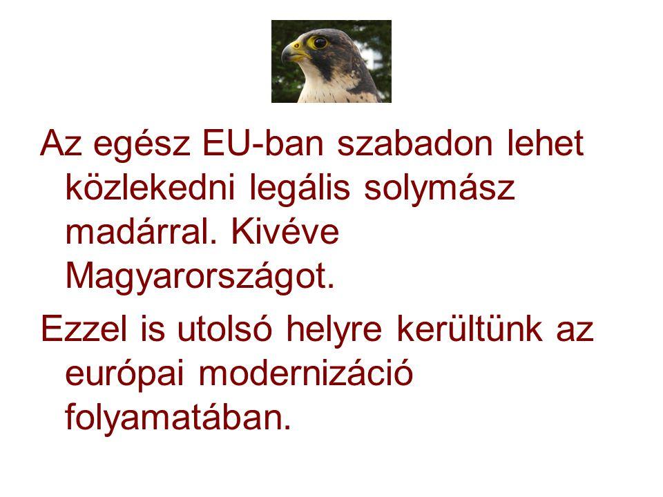 Az egész EU-ban szabadon lehet közlekedni legális solymász madárral