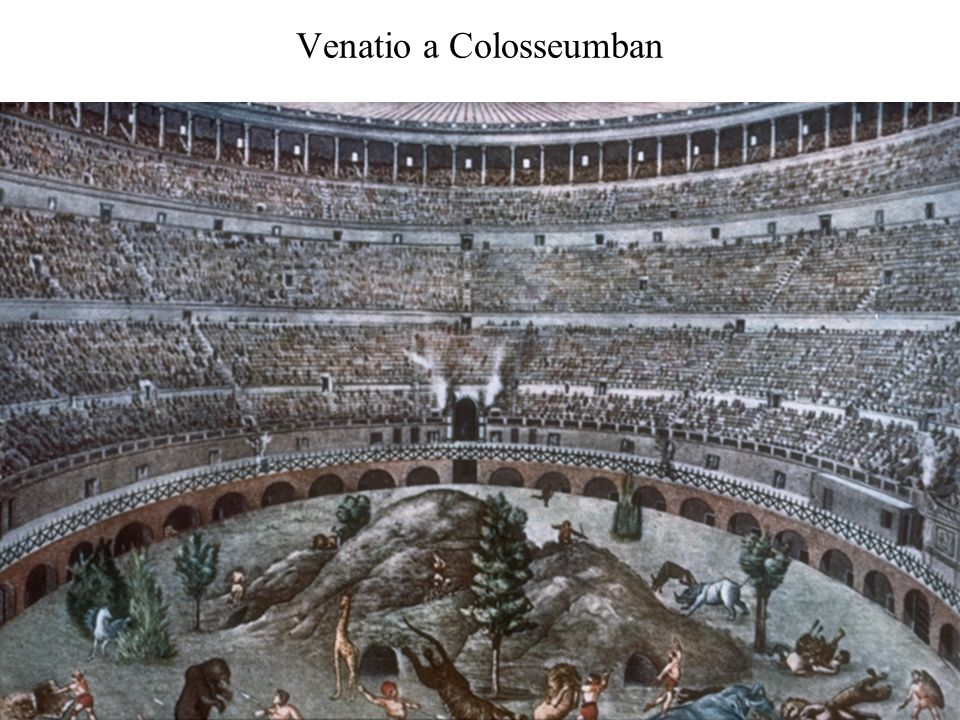 Venatio a Colosseumban