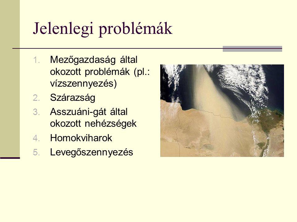Jelenlegi problémák Mezőgazdaság által okozott problémák (pl.: vízszennyezés) Szárazság. Asszuáni-gát által okozott nehézségek.