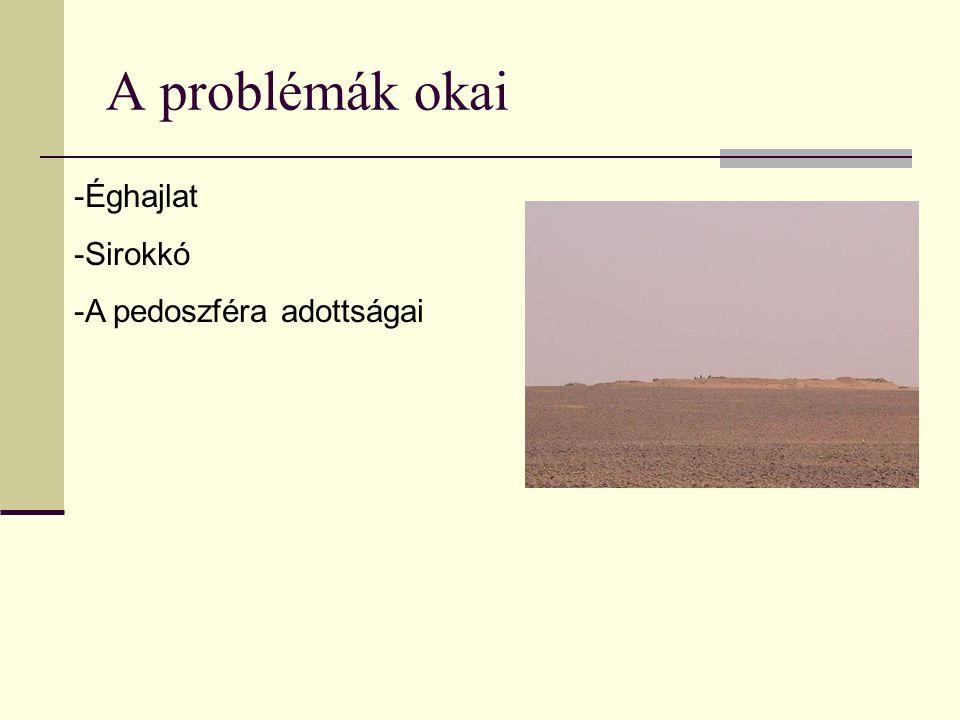A problémák okai Éghajlat Sirokkó A pedoszféra adottságai