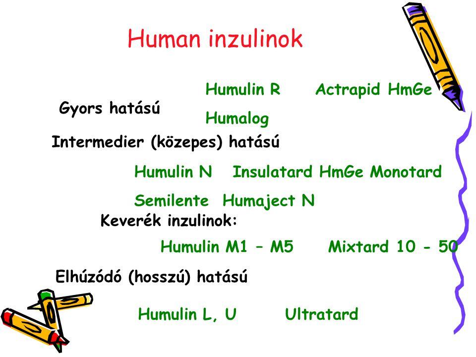 Human inzulinok Humulin R Actrapid HmGe Humalog Gyors hatású