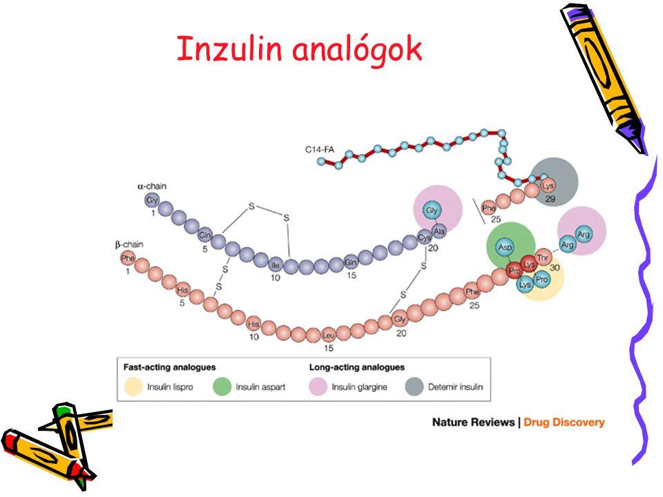 Inzulin analógok