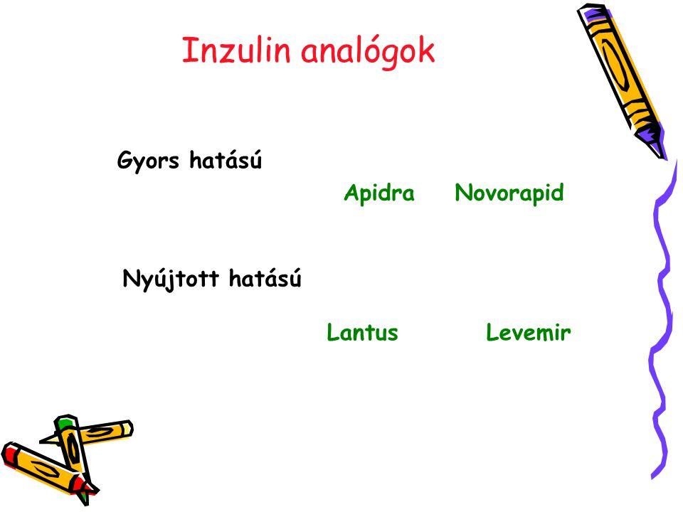 Inzulin analógok Gyors hatású Apidra Novorapid Nyújtott hatású