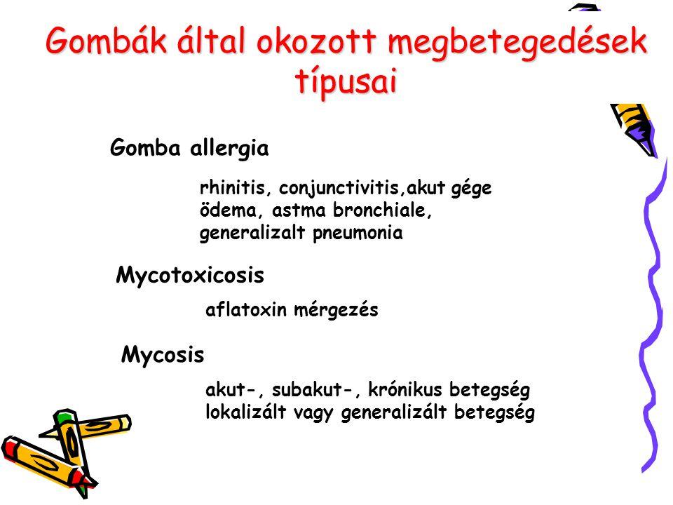 Gombák által okozott megbetegedések típusai