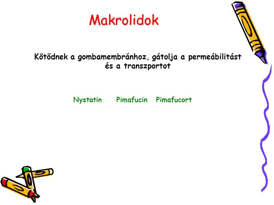 Makrolidok Kötődnek a gombamembránhoz, gátolja a permeábilitást és a transzportot.