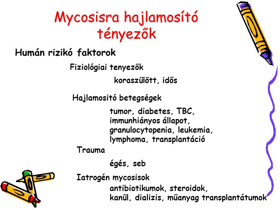 Mycosisra hajlamosító tényezők