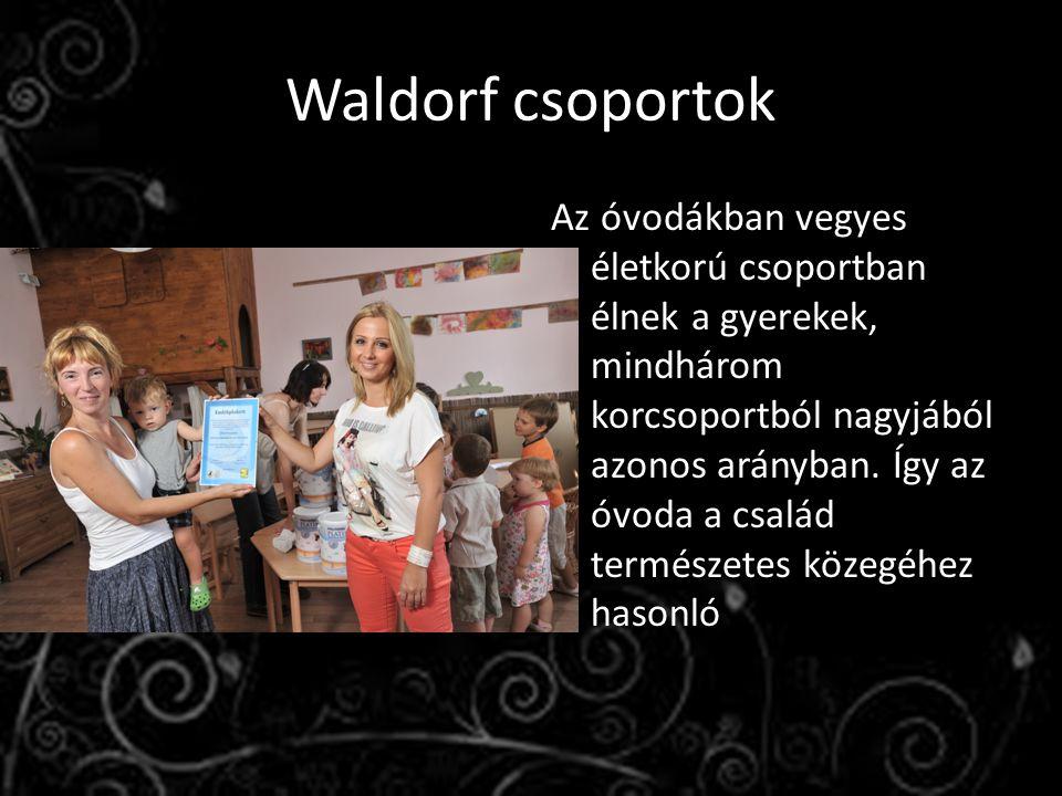 Waldorf csoportok