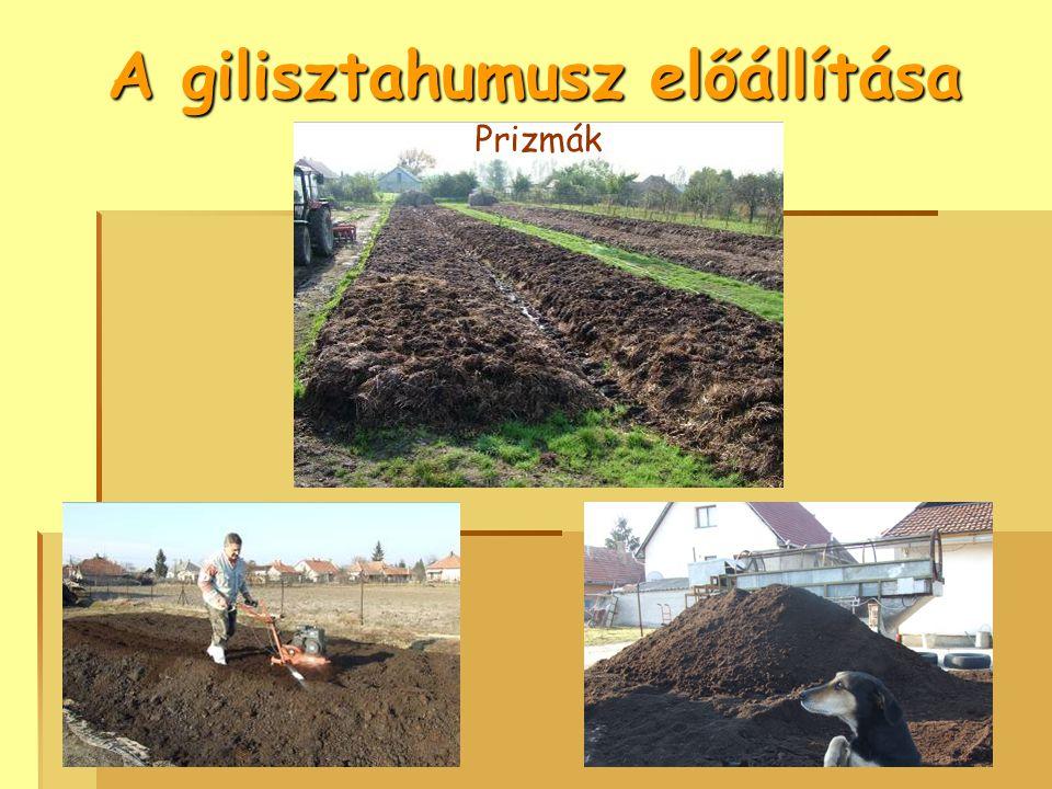 A gilisztahumusz előállítása