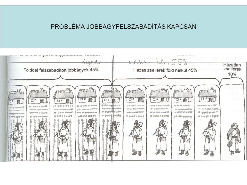 PROBLÉMA JOBBÁGYFELSZABADÍTÁS KAPCSÁN