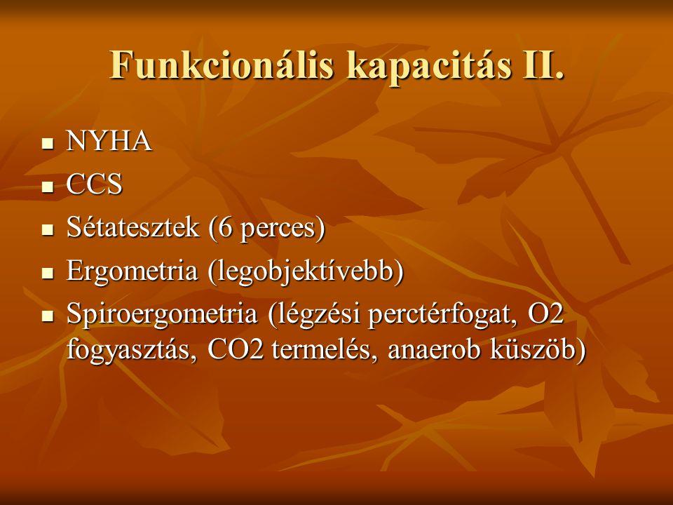 Funkcionális kapacitás II.