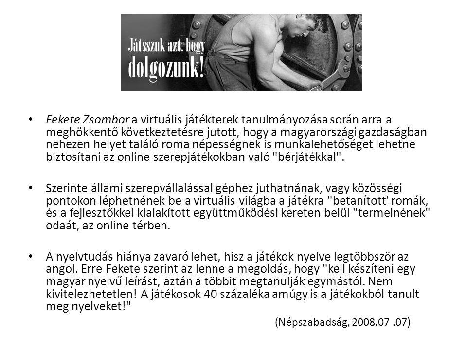 Fekete Zsombor a virtuális játékterek tanulmányozása során arra a meghökkentő következtetésre jutott, hogy a magyarországi gazdaságban nehezen helyet találó roma népességnek is munkalehetőséget lehetne biztosítani az online szerepjátékokban való bérjátékkal .