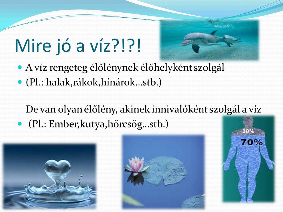 Mire jó a víz ! ! A víz rengeteg élőlénynek élőhelyként szolgál