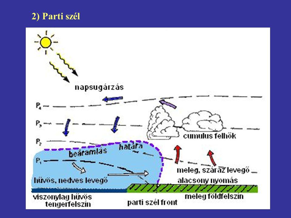 2) Parti szél