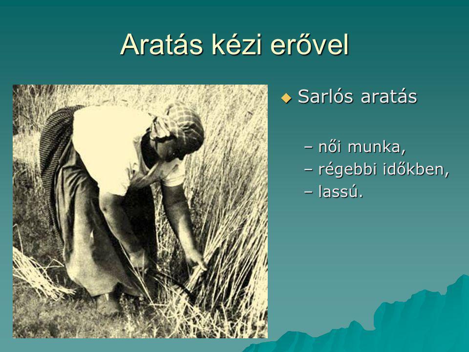Aratás kézi erővel Sarlós aratás női munka, régebbi időkben, lassú.