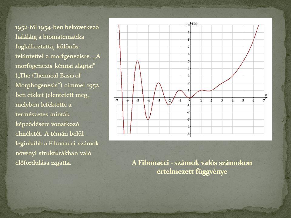 A Fibonacci - számok valós számokon értelmezett függvénye