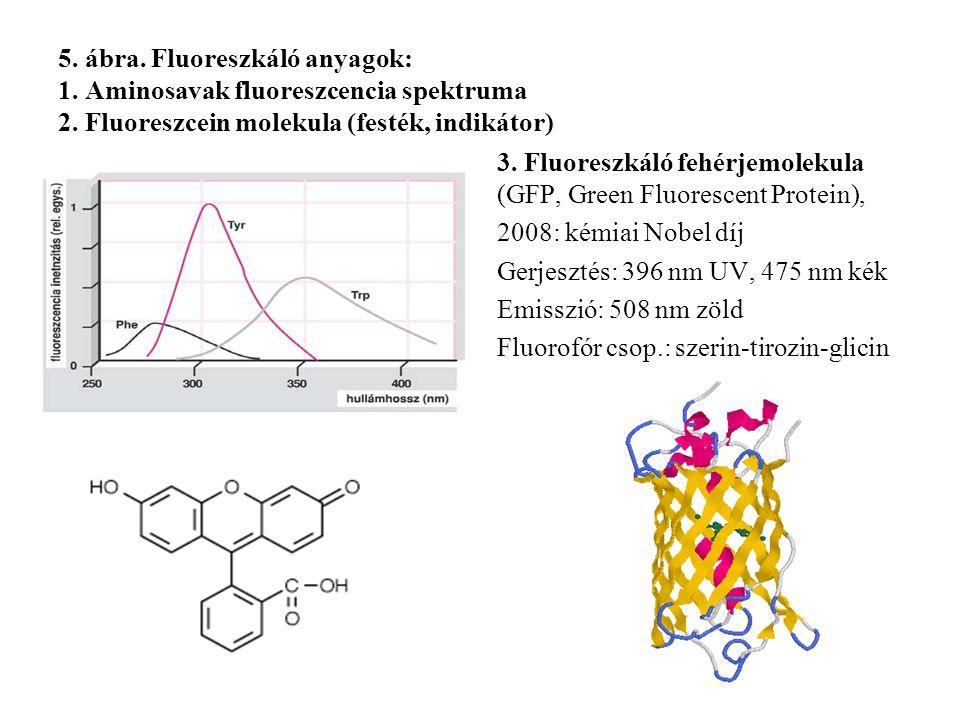 5. ábra. Fluoreszkáló anyagok: 1. Aminosavak fluoreszcencia spektruma 2. Fluoreszcein molekula (festék, indikátor)