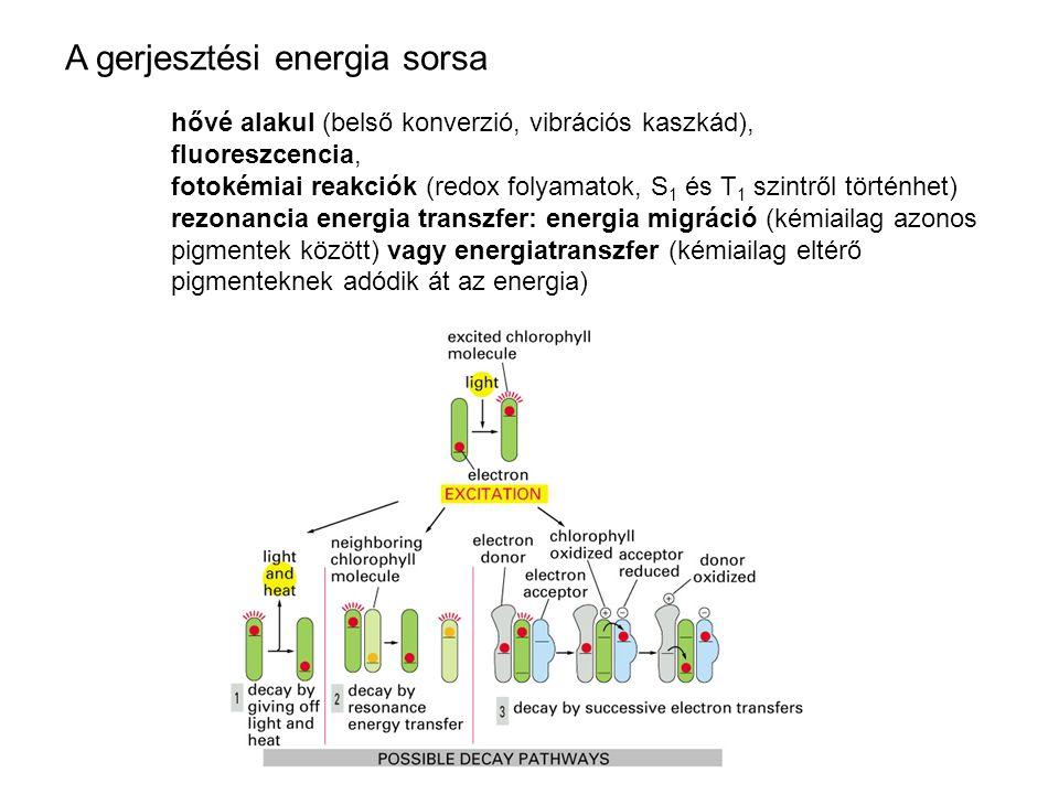 A gerjesztési energia sorsa