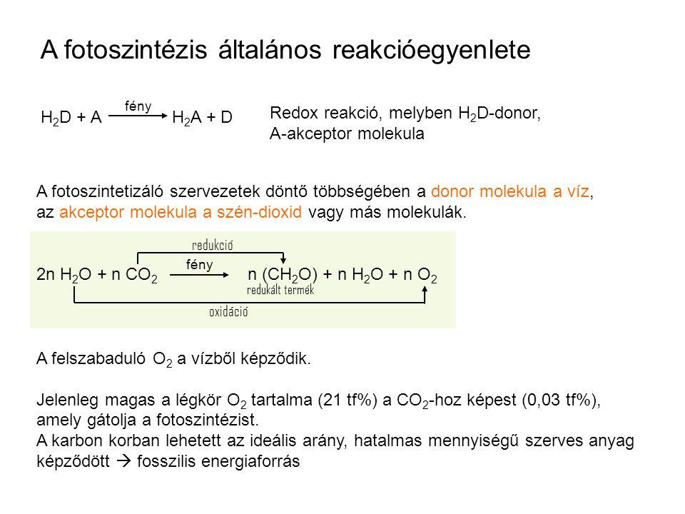 A fotoszintézis általános reakcióegyenlete