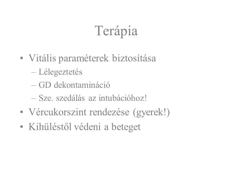 Terápia Vitális paraméterek biztosítása