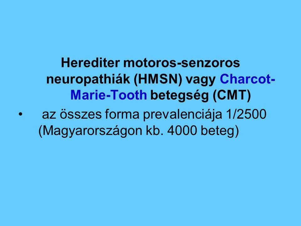 Herediter motoros-senzoros neuropathiák (HMSN) vagy Charcot-Marie-Tooth betegség (CMT)