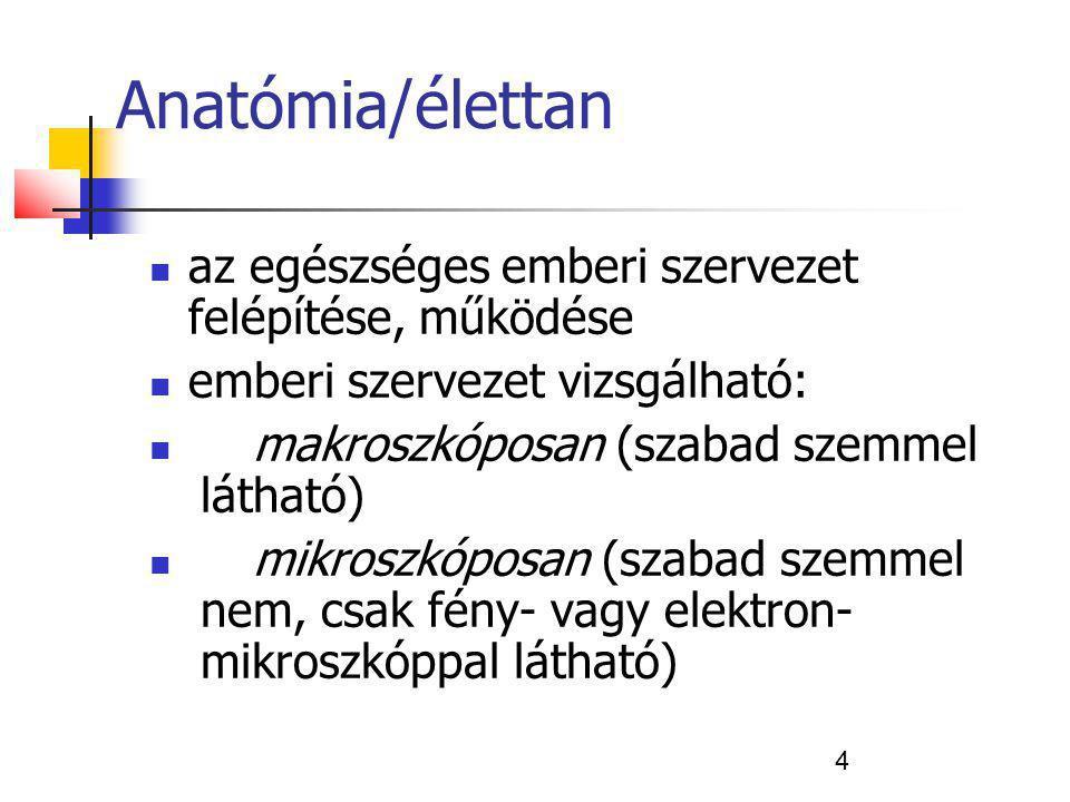 Anatómia/élettan az egészséges emberi szervezet felépítése, működése