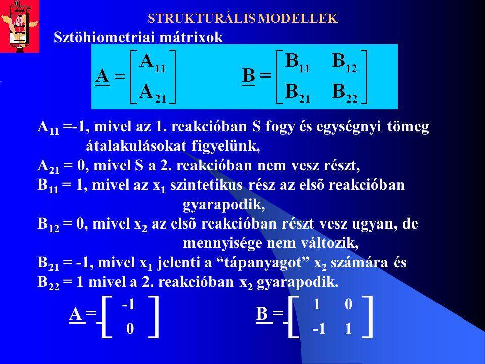 STRUKTURÁLIS MODELLEK