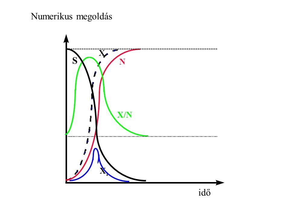Numerikus megoldás S X N X/N idő 1