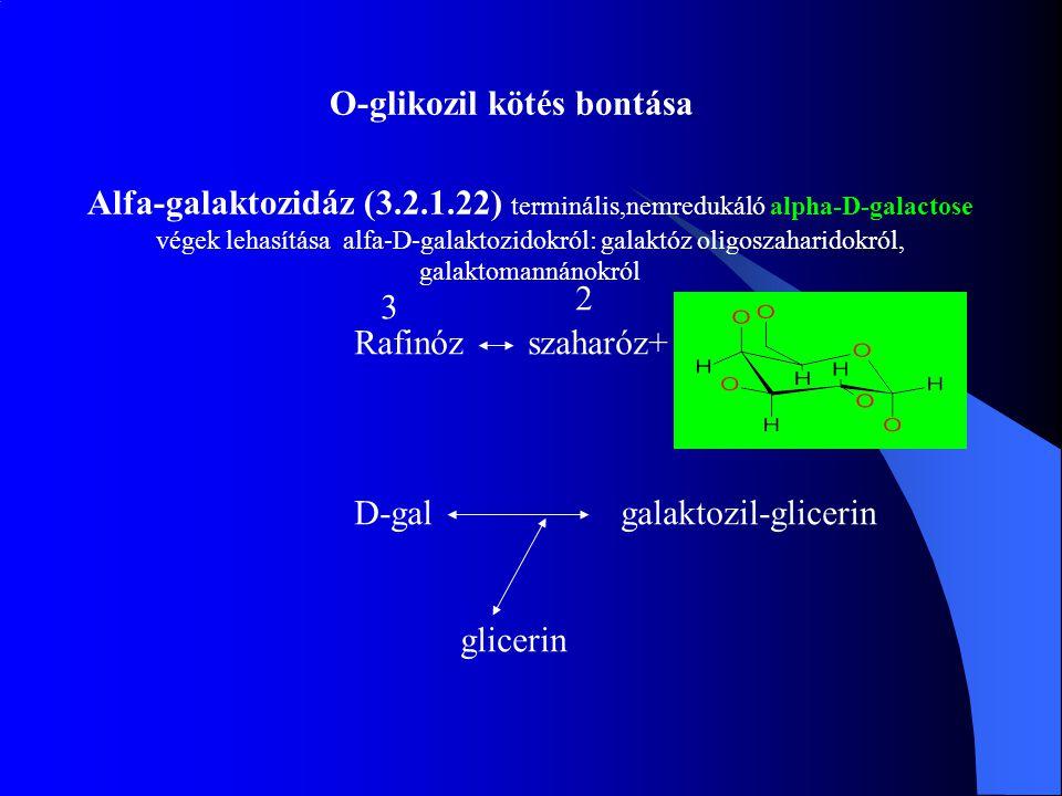 O-glikozil kötés bontása