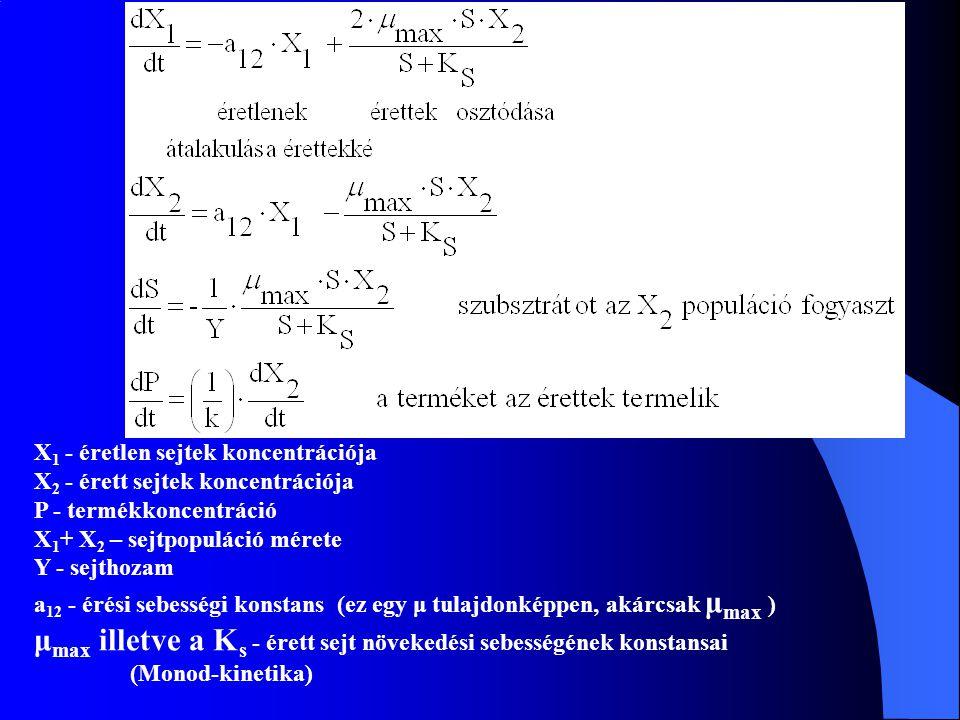 μmax illetve a Ks - érett sejt növekedési sebességének konstansai