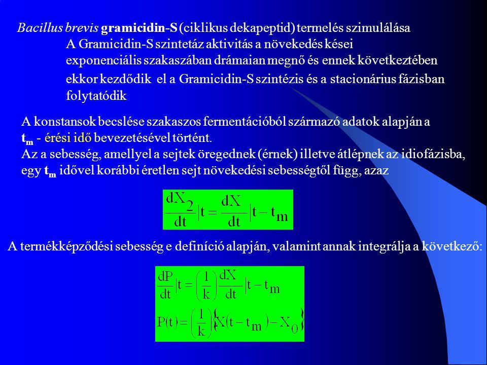 Bacillus brevis gramicidin-S (ciklikus dekapeptid) termelés szimulálása