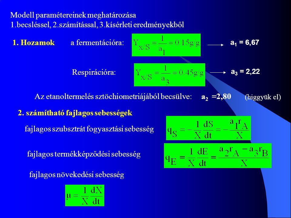 Modell paramétereinek meghatározása