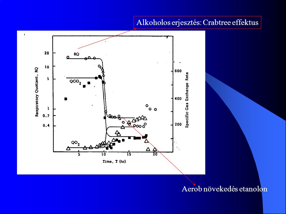 Alkoholos erjesztés: Crabtree effektus