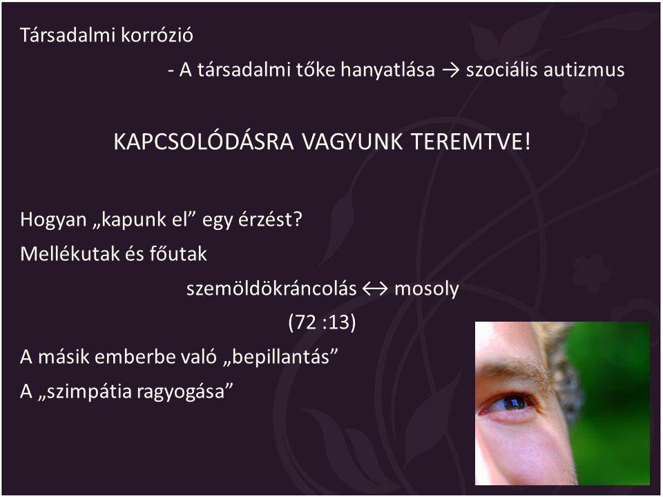 KAPCSOLÓDÁSRA VAGYUNK TEREMTVE!
