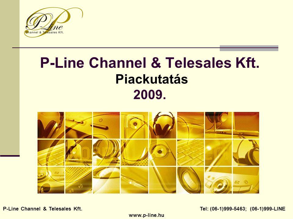 P-Line Channel & Telesales Kft. Piackutatás 2009.