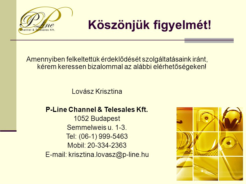 P-Line Channel & Telesales Kft.