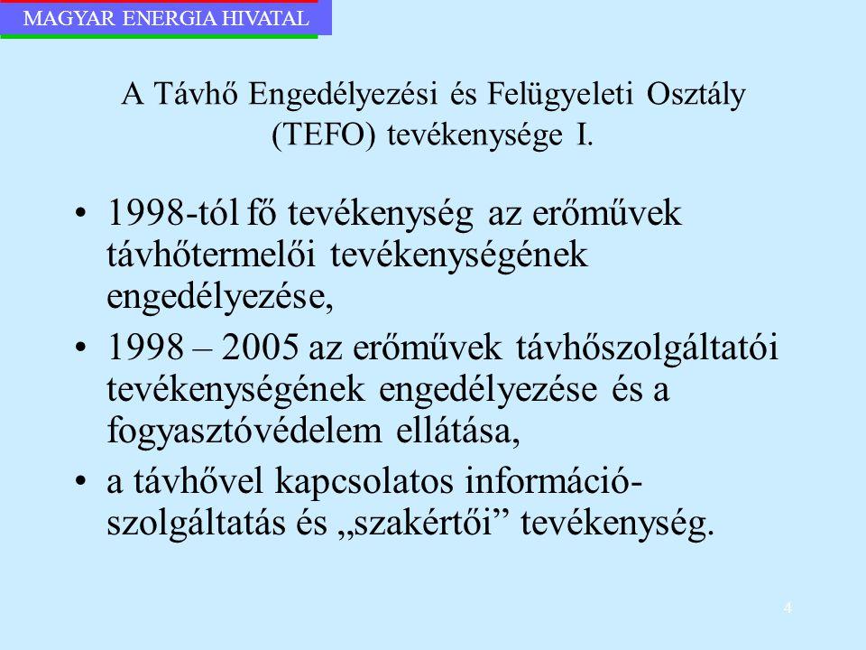 A Távhő Engedélyezési és Felügyeleti Osztály (TEFO) tevékenysége I.