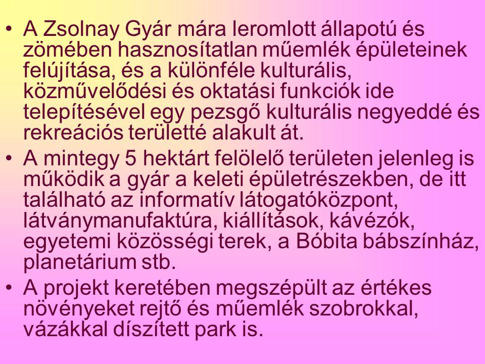 A Zsolnay Gyár mára leromlott állapotú és zömében hasznosítatlan műemlék épületeinek felújítása, és a különféle kulturális, közművelődési és oktatási funkciók ide telepítésével egy pezsgő kulturális negyeddé és rekreációs területté alakult át.
