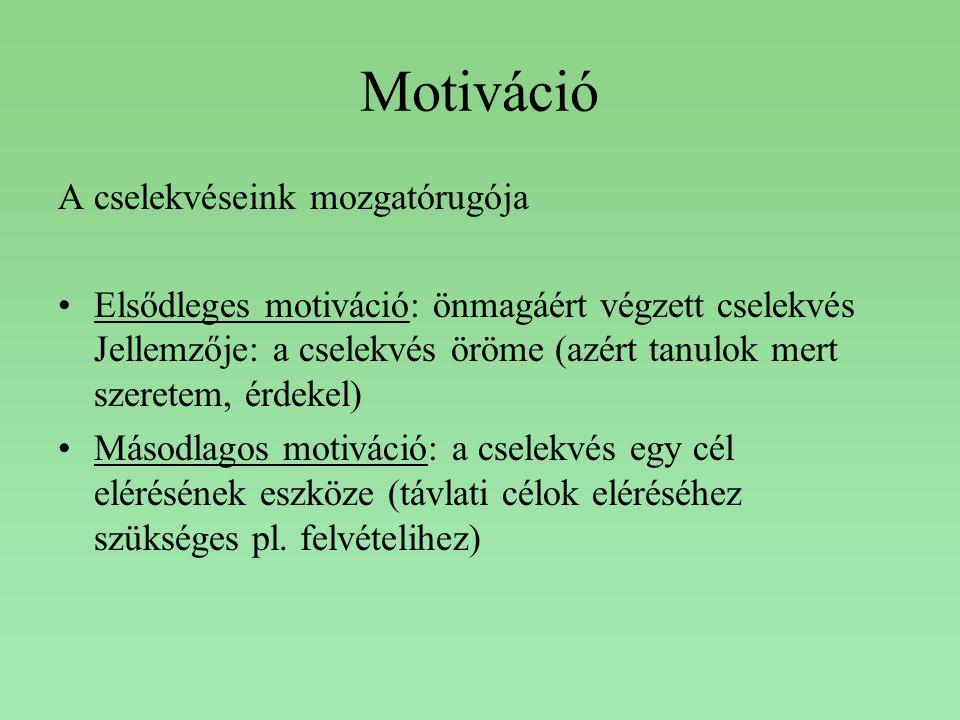 Motiváció A cselekvéseink mozgatórugója