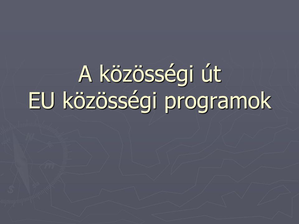 A közösségi út EU közösségi programok
