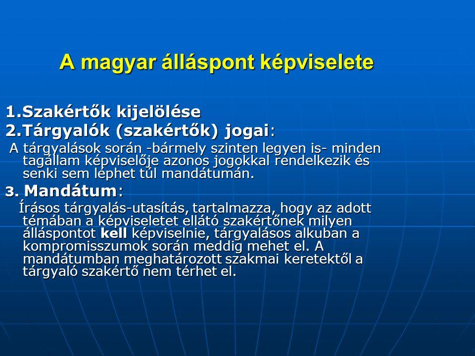 A magyar álláspont képviselete