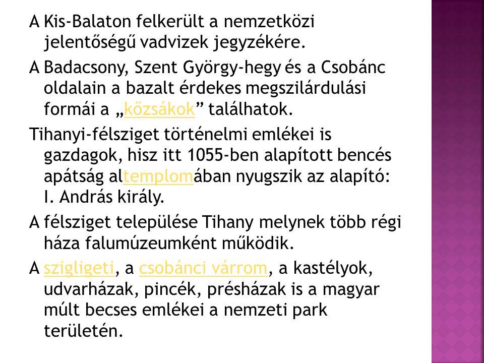 A Kis-Balaton felkerült a nemzetközi jelentőségű vadvizek jegyzékére