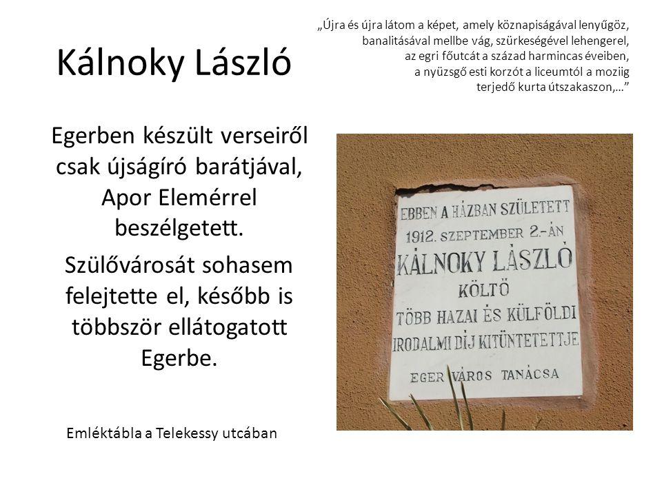 Emléktábla a Telekessy utcában