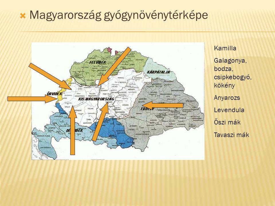 Magyarország gyógynövénytérképe