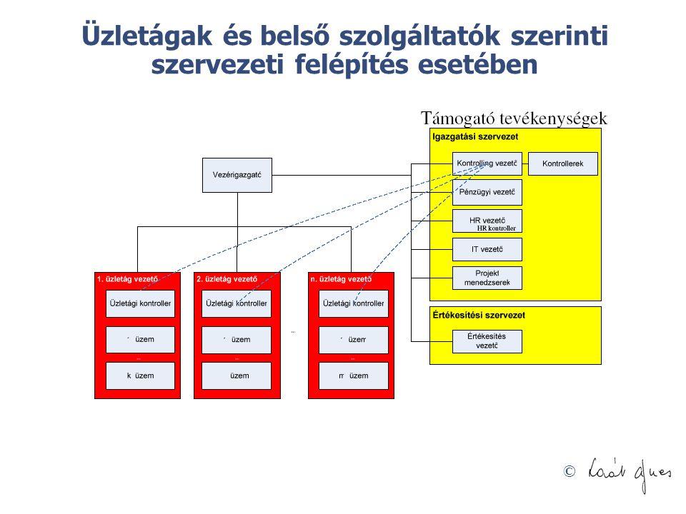 Üzletágak és belső szolgáltatók szerinti szervezeti felépítés esetében